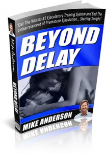 Beyond Delay Review of Pdf Book by Mike Anderson